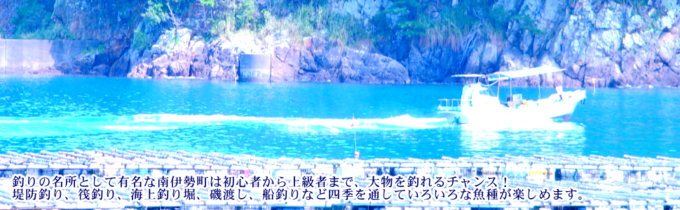 釣り船・磯釣り・釣り堀